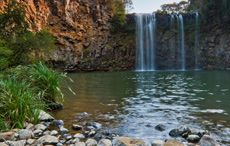 North Coast Caravan Parks & Camping - Parks & Campgrounds