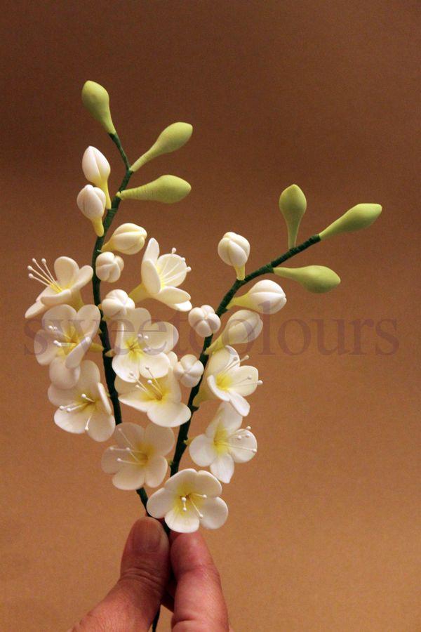 Sweetcolours es mi primer paso virtual en el mundo de la - Mundo de la reposteria ...