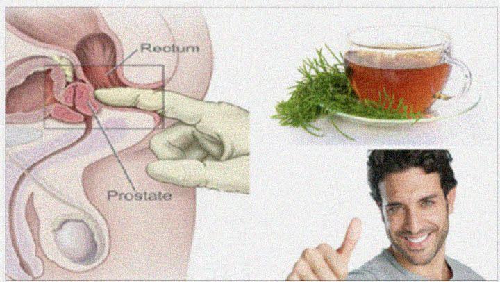 ¿cuáles son los alimentos que ayudan a la próstata reaction