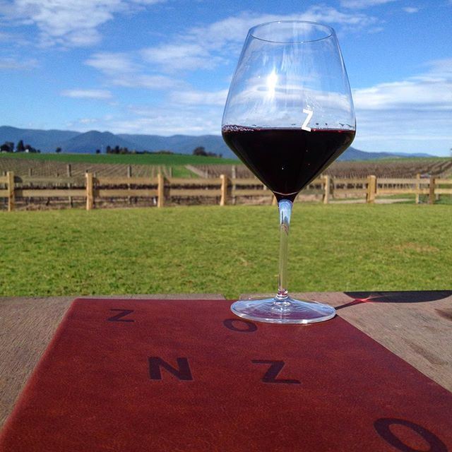 Zonzo Estate - Pinot Noir yarravalleylife.com at Zonzo Estate #yarravalley #wine #yarravalleylife