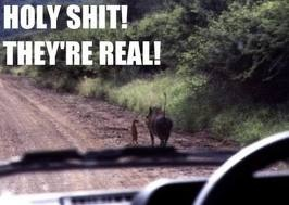 HAHAHAHA! LION KING MOMENTS ARE THE BEST KINDS OF MOMENTS!