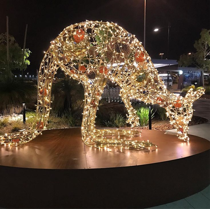 Outside Perth Airport Arrivals Hall are giant kangaroos decorated with Christmas lights. A seasonal welcome from Western Australia.