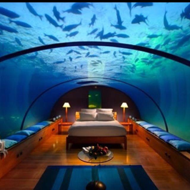 Aquarium Hotel Room Aquarium Pinterest