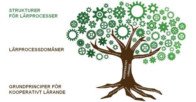 Strukturer inom Kooperativt Lärande är placerade inom vissa lärprocessdomäner för att kunna identifiera vad övningen främst utvecklar för förmågor hos deltagarna. På engelska kallas dessa;Team-bui…