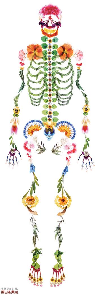アートディレクタ-多田明日香はお押し花を使ったアートで知られている。 そして押し花でドクロ(ガイコツ)や人体の骨格などを作った。まるでカラフルなレントゲン写真の様に美しい。