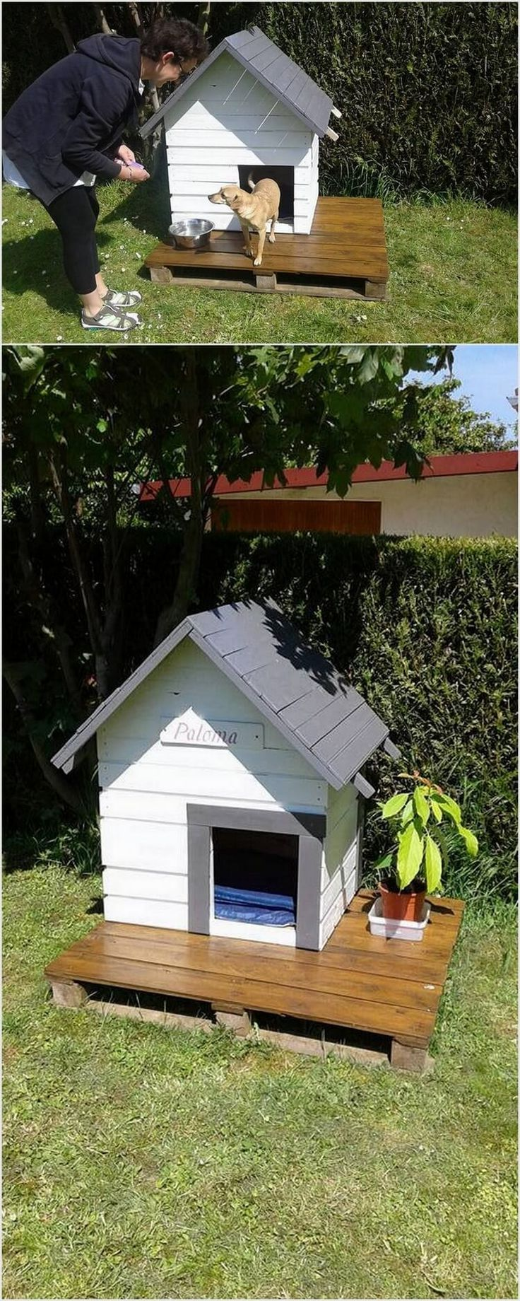 On our list we have shipping pallet dog house. This idea is perfect if you want to give your pet dog with the best house living in a comfort zone. If you don't like the entrance of the dogs inside the house, then be sure that you design a simple and yet a comfortable wood pallet house for them in the garden area.