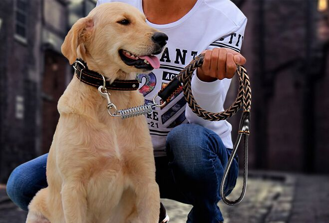 High Quality Top Cowhide Medium/Large breed Dog Collars Leash Dog Chain Pet Traction Rope Solid Leather Less 50 KG Pet Supplies #Affiliate
