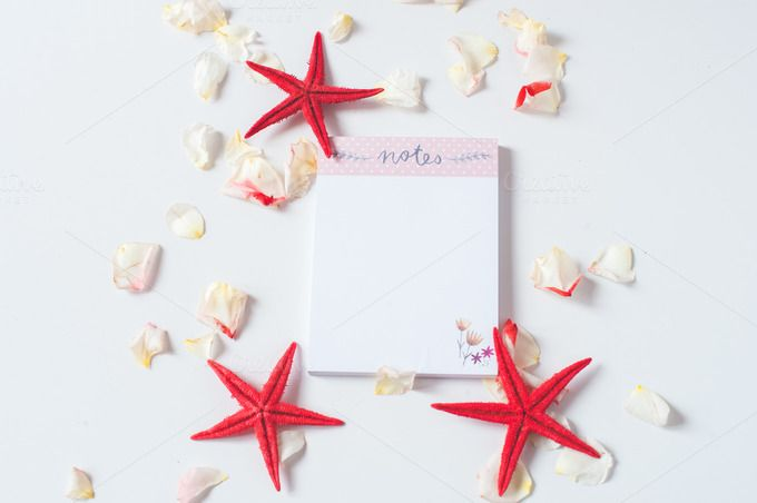 Notes roses sea stars I Styled Stock - Business