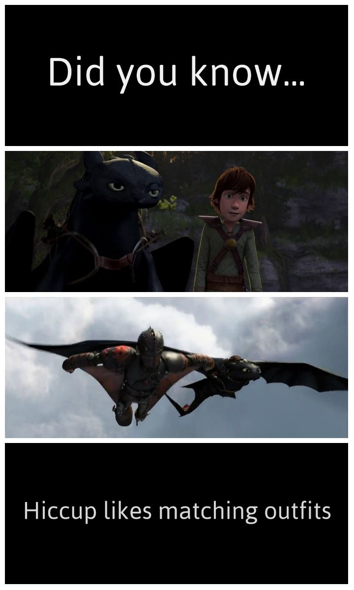 Hiccup loves matching outfits. I've always known that. I ...