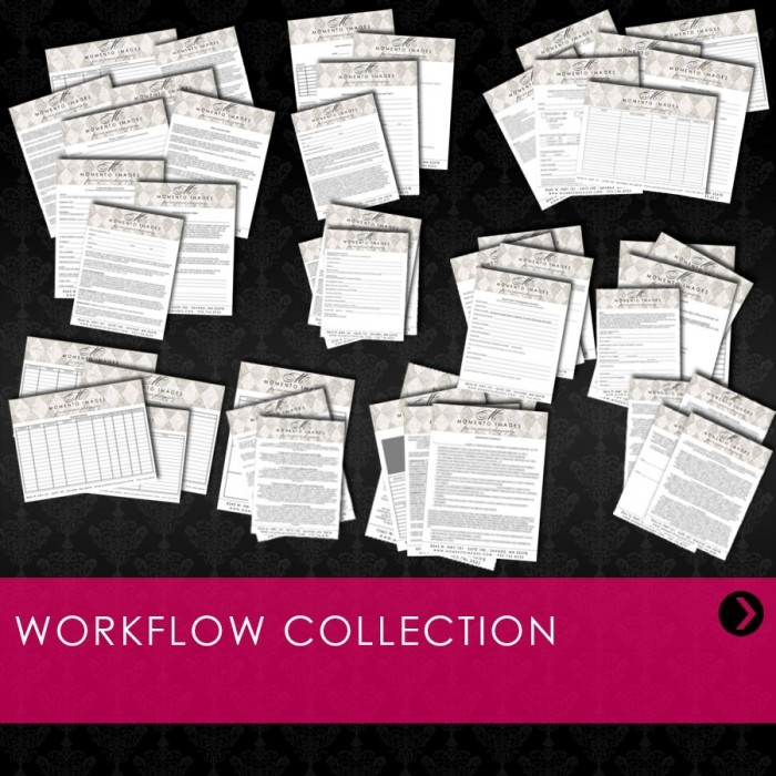 Workflow Collection: Includes: Digital Workflow, Client Information Sheet, Model Release Form, Non-Compete, Print Release, Event Info Form, Event Order Form, Reorder-Rush Order Form, Senior Booking Form, Business Contacts, Business Friends, Charitable Donation Log, Custom Design Form, Daily Office Tasks, Daily Schedule, Fax Cover Sheet, Letterhead, Vendor List, Voicemail Log, Product Description Labels,
