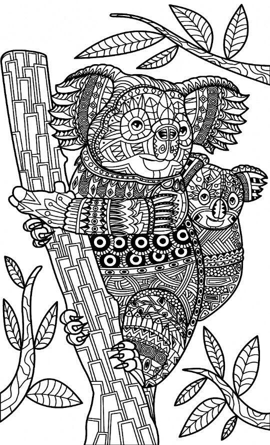 koalas zentangle coloring page