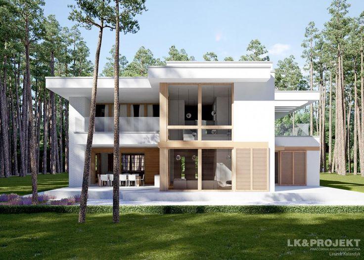 Projekty domów LK Projekt LK&1229 zdjęcie 1