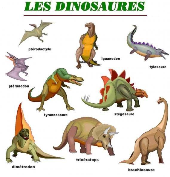 Resultado de imagen para vocabulaire les dinosaures
