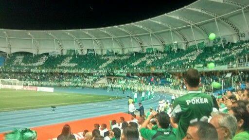 Tifo - Deportivo Cali