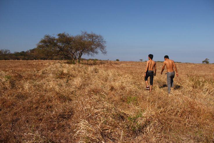 Africa van Java 2011