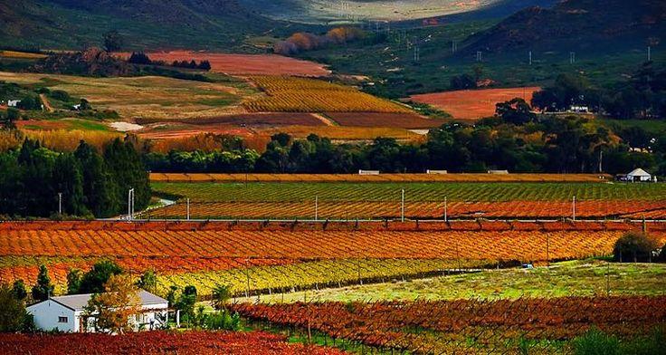 De Doorns, Western Cape, South Africa