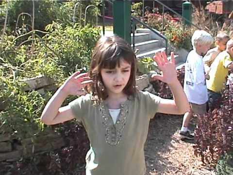 Children explain why their Nature Explore outdoor learning space is important