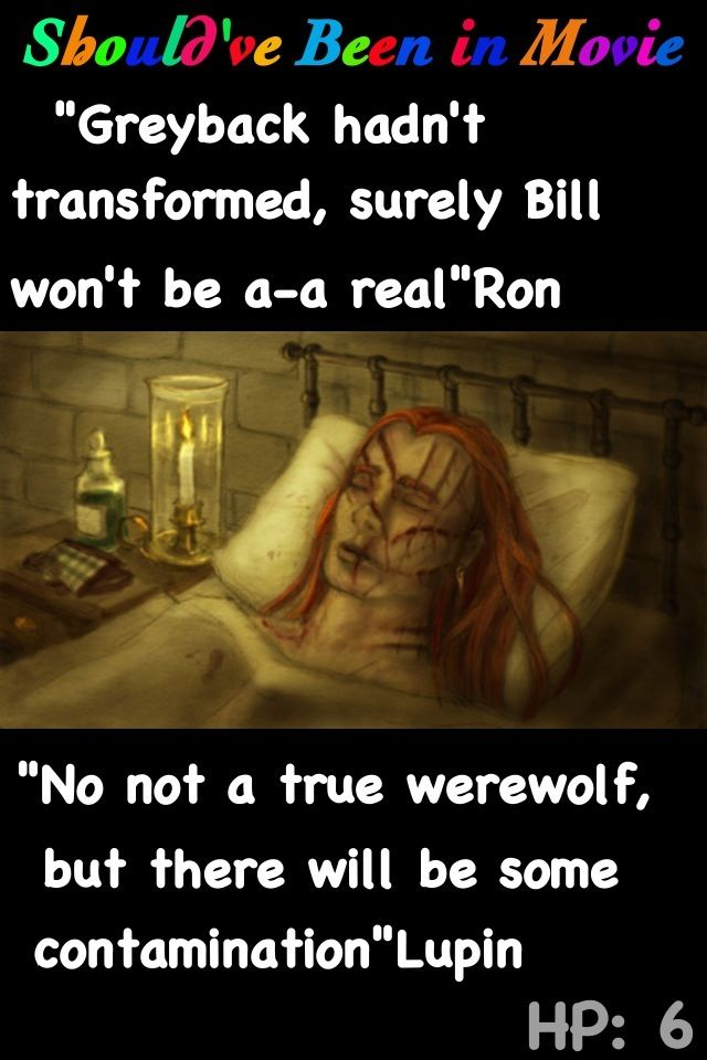 Harry Potter and the Half-Blood Prince Should've Been in Movie Bill Weasley Fenrir Greyback bite Ron Lupin Mrs. Weasley Fleur Harry Ginny Ron