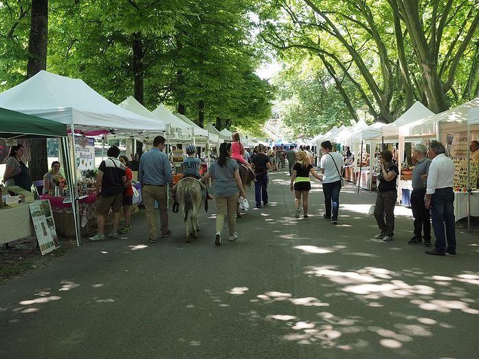 5 Luglio: al Parco Cittadella il terzo appuntamento di Slow Food Valley fra produttori agricoli, artigiani, laboratori didattici, degustazioni, picnic e passeggiate con gli asini.