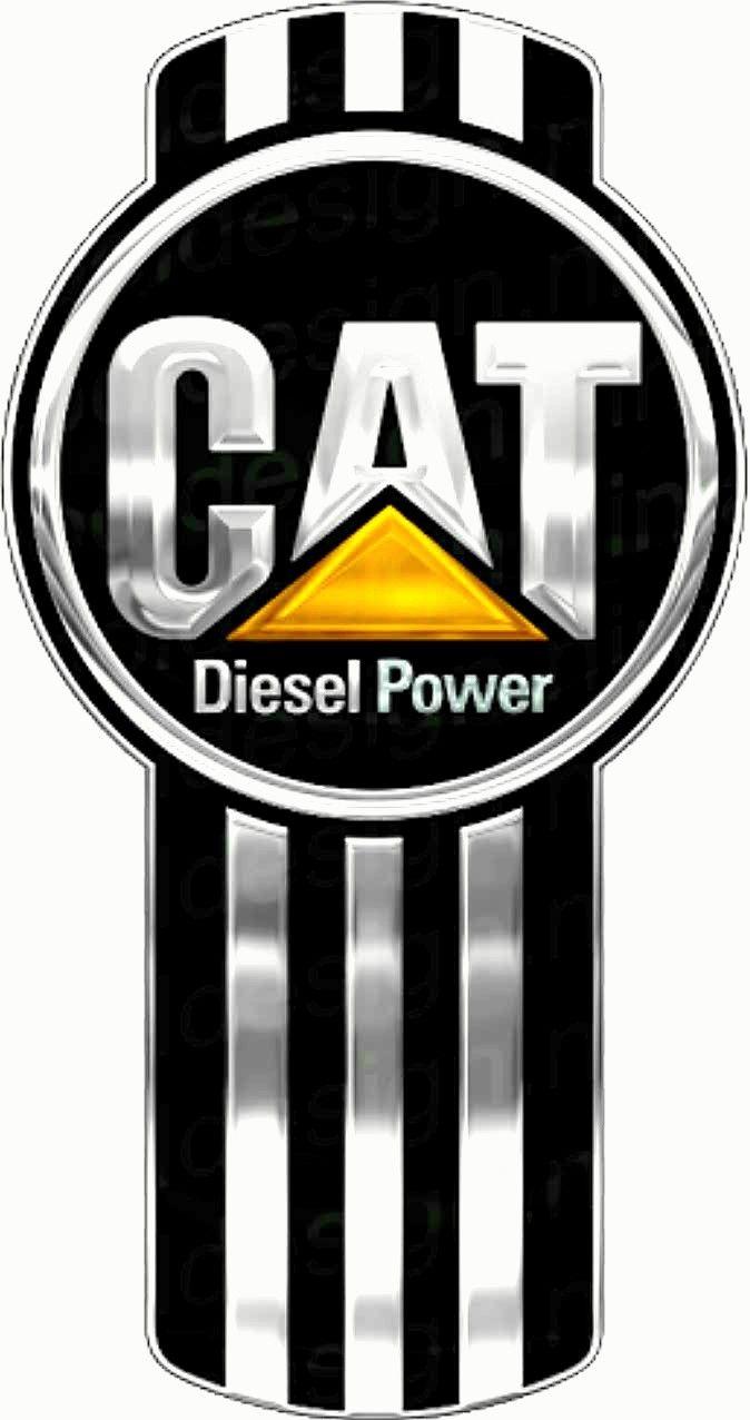 Cat diesel power
