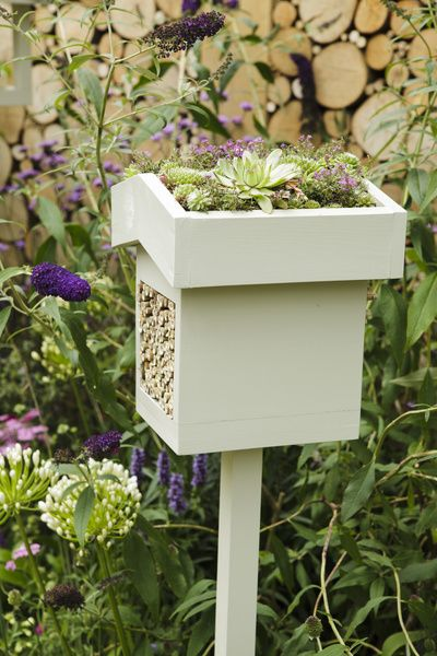piha,ideat puutarhaan,ideat pihaan,hyönteishotelli,pihan istutukset