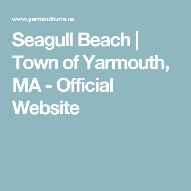 Seagull Beach   Town of Yarmouth, MA - Official Website