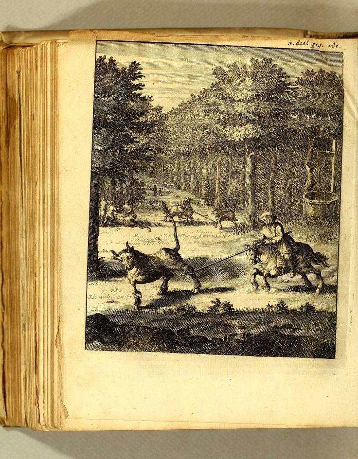 William: Dampier's Book   Illustration; : - Biodiversity Heritage Library