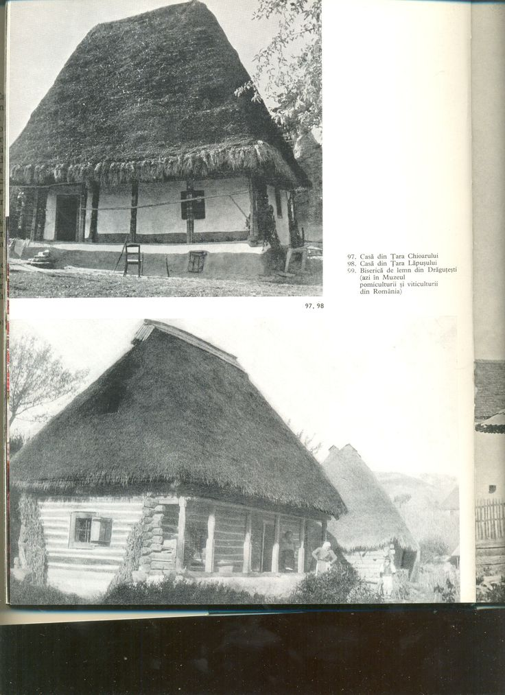 Straw roofed houses