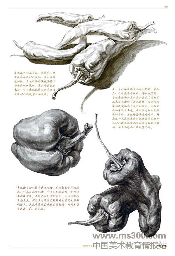 http://www.ms300.com/mavista/cms/zh/wenzhangfenlei/huihuajiaocheng