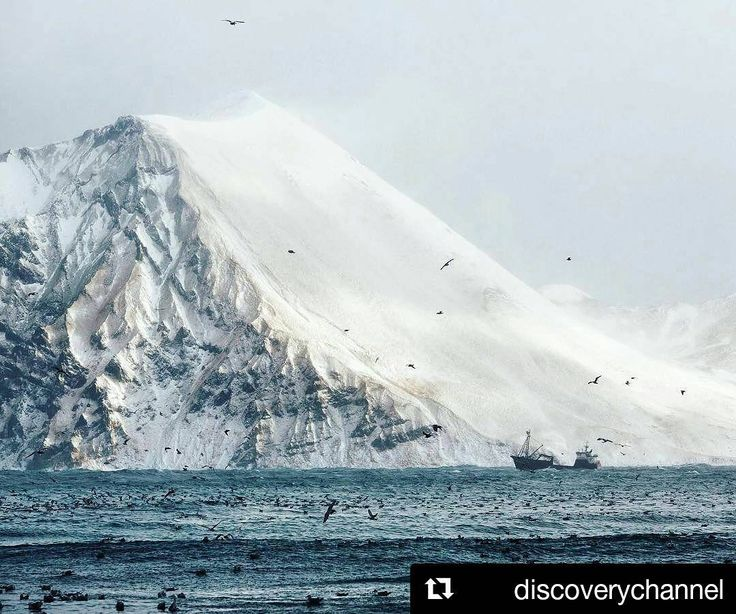#Repost @discoverychannel (@get_repost)  Photo and text by Corey Arnold @arni_coraldo   Greetings from Dutch Harbor Alaska. This week Ill be taking over @discoverychannel Insta account to post photos from my life working as a commercial fisherman in the Bering Sea and Bristol Bay Alaska.  After many years crabbing aboard the f/v Rollo I now run a setnet operation chasing sockeye salmon in Bristol Bay and spend months in the off season documenting life in this very surreal world called the…