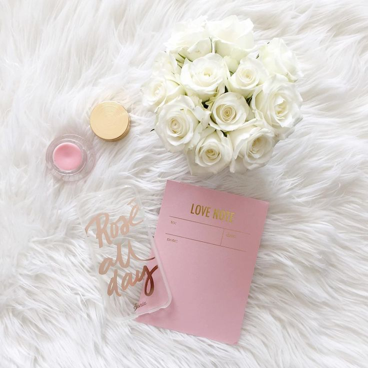 « <love note   new blog post on my Instagram tips www.lovetpd.com> »