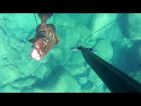 Speed Boat Agelos - YouTube