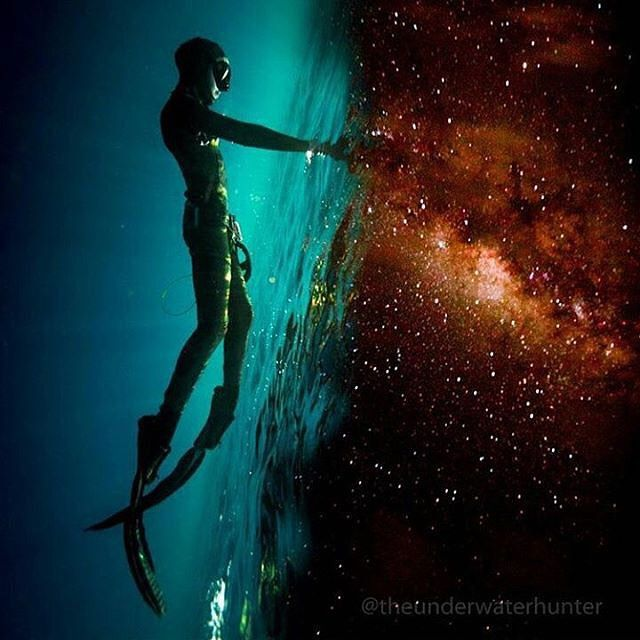 """Photo Of The Week: """"A Portal Between Two Worlds"""" by @theunderwaterhunter   More…"""