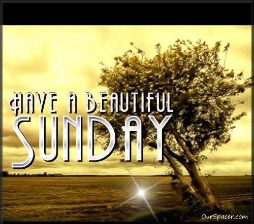 Have A Beautiful Sunday good morning sunday sunday quotes good morning sunday sunday images sunday pictures sunday quotes and sayings