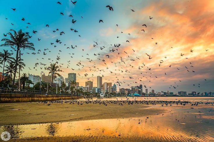 Friday Fan Day Photo Gallery 09/10/2015 - 5 Star Durban - Showcasing Beautiful KwaZulu-Natal