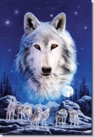 wolf fantasy pics | Fantasy Wildlife Wölfe Tiere & Fabelwesen Night of the Wolves Wolf ...