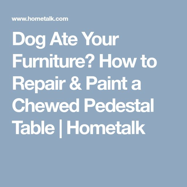 Dog Ate Your Furniture? How to Repair & Paint a Chewed Pedestal Table | Hometalk