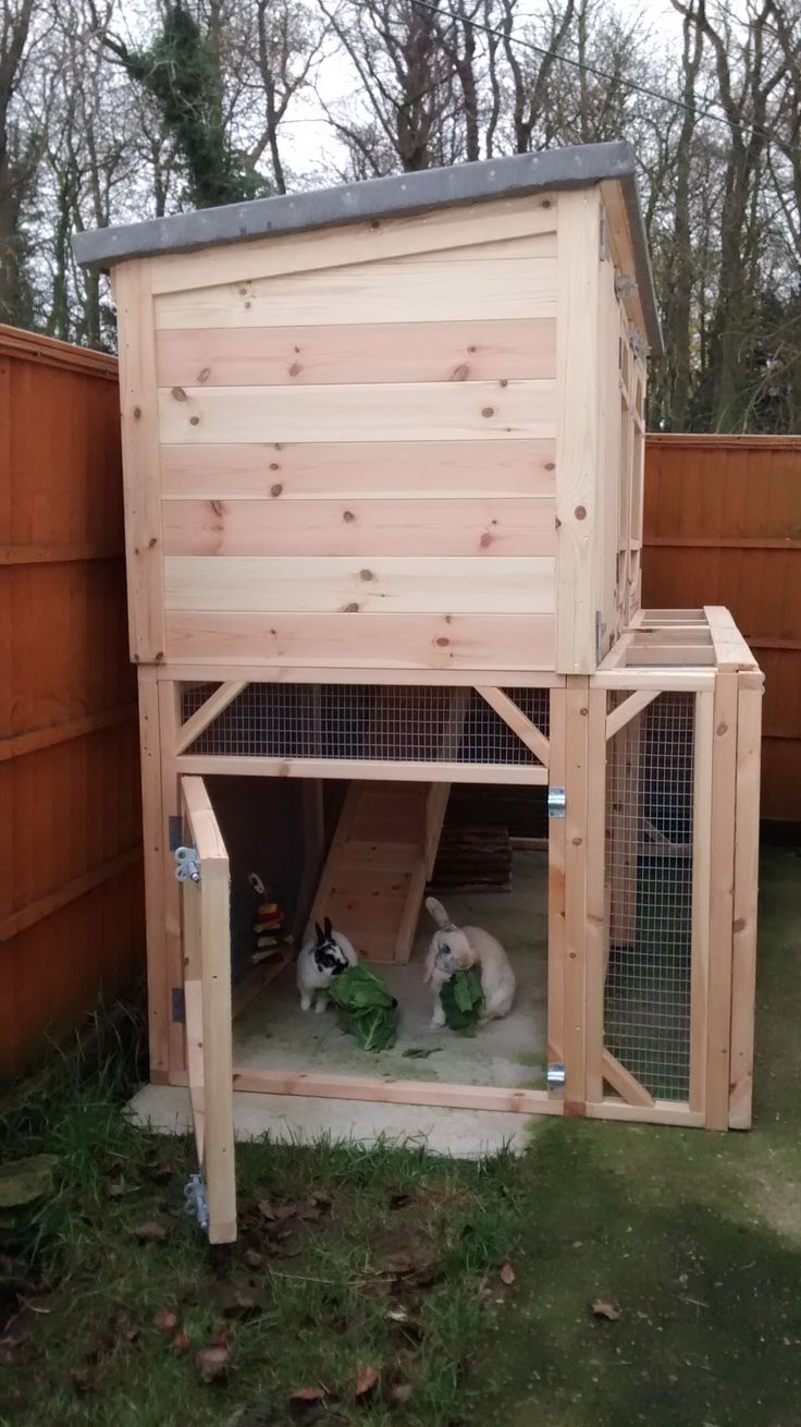 25 best ideas about large rabbit hutches on pinterest for Amazing rabbit cages