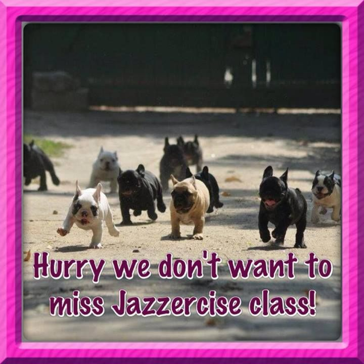 Hurry, we don't want to miss Jazzercise class!  Come visit Lakes Area Jazzercise in Walled Lake, MI and dance your way to a better body!  Feel free to call (248) 722-4095 or visit our website www.jazzercise.com to find out more information!