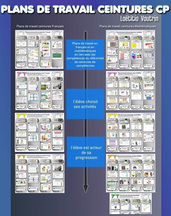 Les ceintures de compétences, tirées de la pédagogie institutionnelle, sont un dispositif d'évaluation organisé par paliers de compétences. Leur acquisition est représentée par une gradation de co…