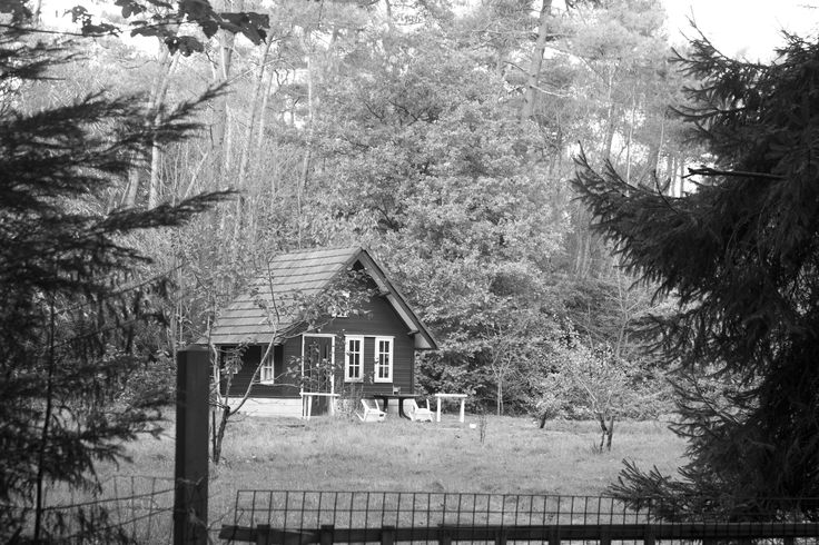 Forest cottage; 1/100 f/5.6 ISO 800