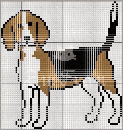 A pedidos, um cãozinho da raça beagle!
