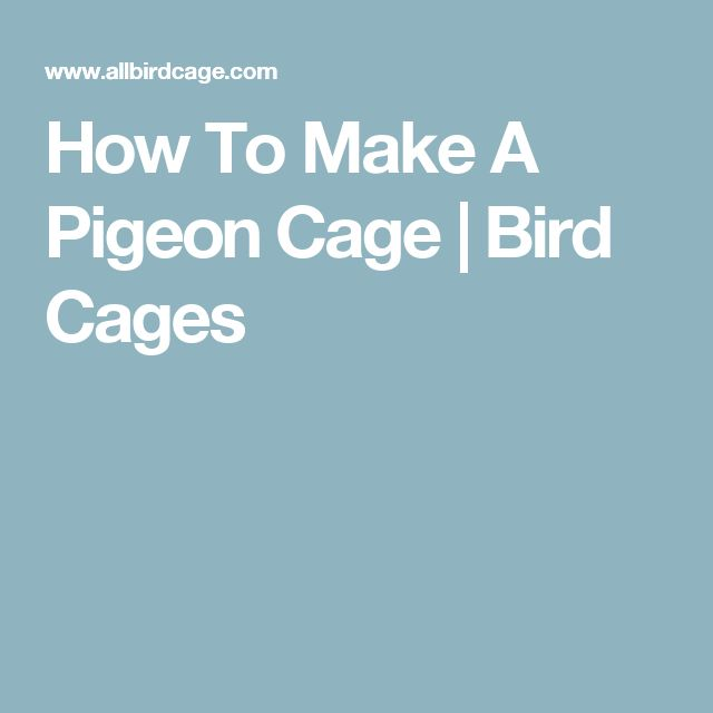 How To Make A Pigeon Cage | Bird Cages