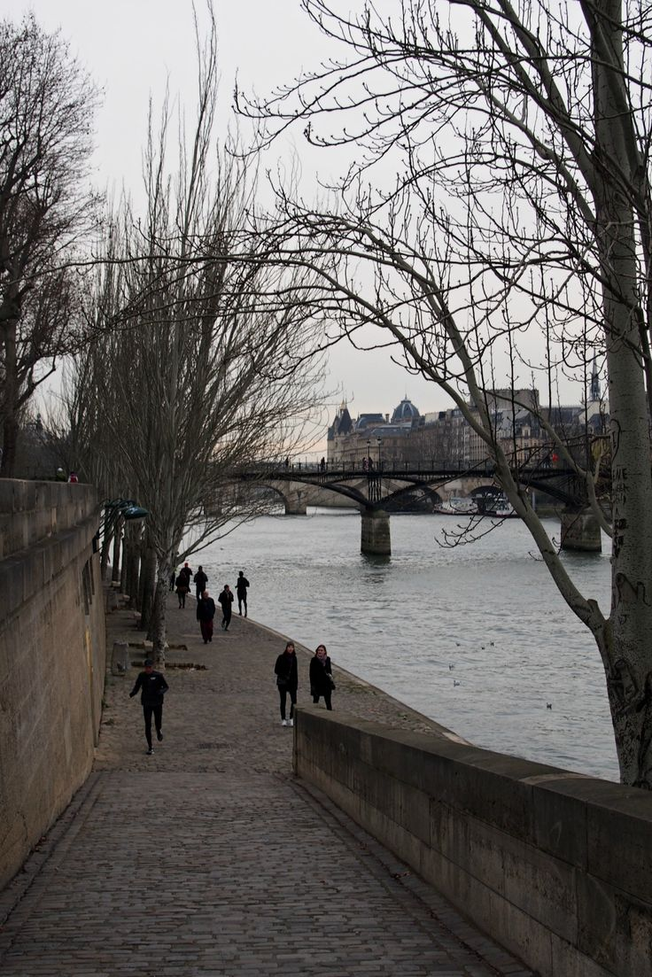 Hannas Home / Paris in January / The river Seine