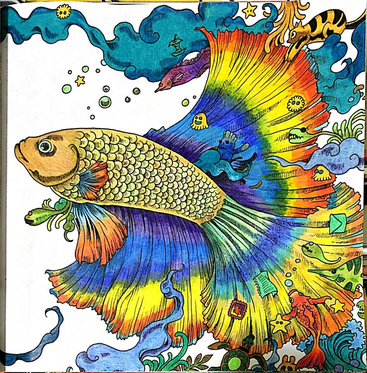 Coloring Book Journaling Bible Paintings