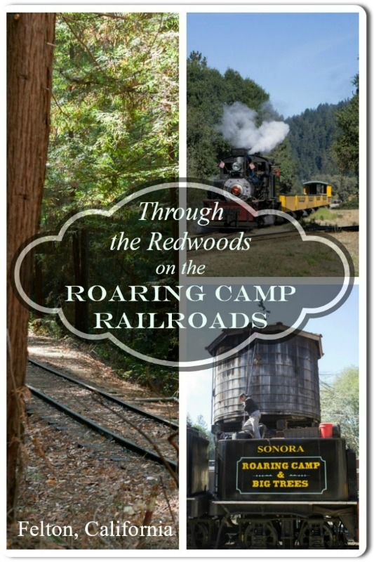 Combining my love for the Redwoods and my son's love of trains led us to the perfect match -- Roaring Camp Railroads in Felton, California! #sanfranciscodaytrip #santacruz #railroad #felton #california