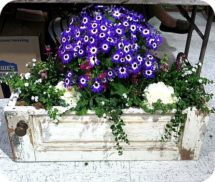 repurposed door or cabinet made into a flower planter! love <3