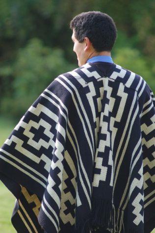 Mapuche - gente de la tierra: Un articulo interesante sobre la cultura Mapuche / Mapuche - people of the earth: An interesting article about the Mapuche culture