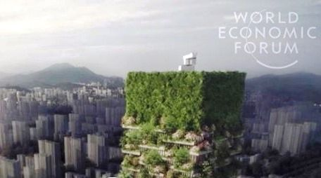 China's vertical forest will fight pollution and produce 60kg of oxygen a day – Nicola Noe