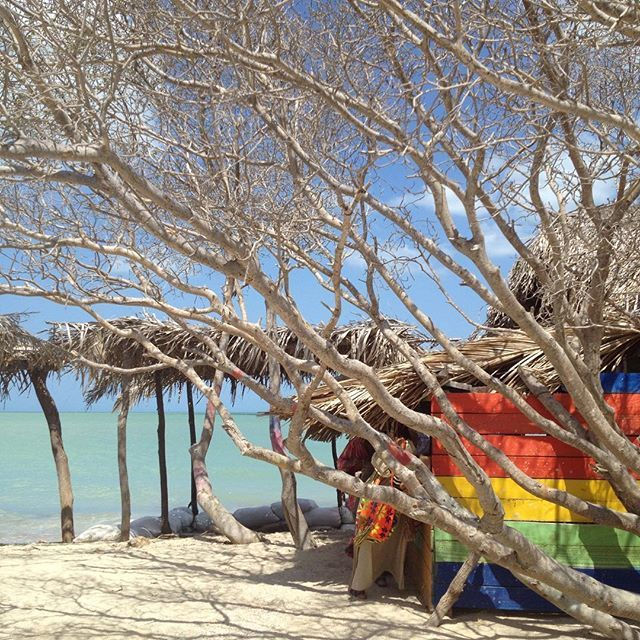Just 25 minutes away from #riohacha #mayapo beach has clean blue waters, delicious fresh fried fish and cheap beer. Life doesn't get much better than this!